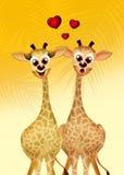 Giraffe in love Royalty Free Stock Image