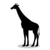 Giraffe mammal black silhouette animal Royalty Free Stock Photos