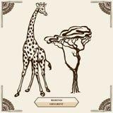 Giraffe and mehendi ornament Stock Photos