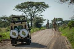 Giraffe mit vier Masais vor Jeep auf Straße lizenzfreie stockfotografie