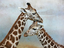 Giraffe with mother Stock Image