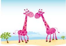 Giraffe nell'amore Fotografia Stock Libera da Diritti