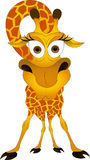 Giraffe stock illustration
