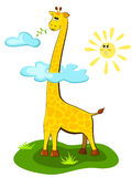 Giraffe over the sun Stock Image