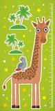 Giraffe parrot bird and palms on green background Children height meter wall sticker. Vector Royalty Free Stock Photos