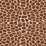 Giraffe pattern Royalty Free Stock Image