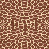 Giraffe pattern Stock Photography
