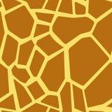 Giraffe pattern Stock Images