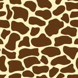 Giraffe pattern Stock Photos