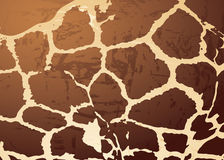 Giraffe pattern skin Stock Images