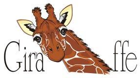 Giraffe peek up from word. Giraffe stick out from black word giraffe Stock Image