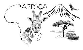 Free Giraffe Portrait On Africa Map Background With Kilimanjaro Mountain, Vulture And Car Royalty Free Stock Images - 168006249