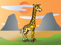 Giraffe on prairie Royalty Free Stock Photo