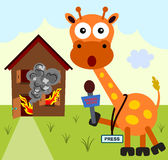 Giraffe the reporter Stock Photo