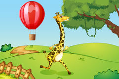 A giraffe running and a floating hot air balloon Stock Photos
