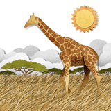 Giraffe  in Safari field recycled paper background Royalty Free Stock Photo