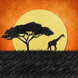 Giraffe  in Safari field recycled paper background Stock Photos