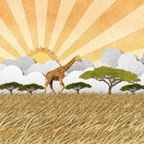 Giraffe  in Safari field recycled paper background Royalty Free Stock Photos