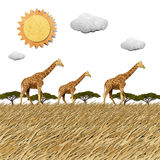 Giraffe  in Safari field recycled paper background Royalty Free Stock Photography