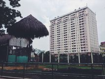 Giraffe in Saigon Zoo with a high building on the background Stock Image