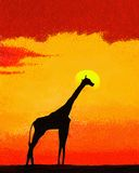 Giraffe on the savannah at sunset. Royalty Free Stock Photography