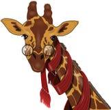 Giraffe in a scarf Stock Photos