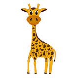 Giraffe. It should be spotted giraffe on a white background Stock Photos