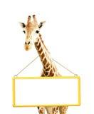 Giraffe with signboard Stock Photo