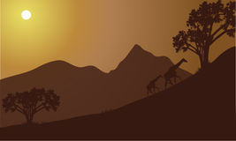Giraffe silhouette on the hill. At the morning Royalty Free Stock Photos