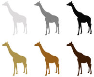 Giraffe silhouette. Vector file of giraffe silhouette Royalty Free Stock Images