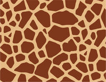 Giraffe skin  Stock Image