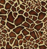 Giraffe skin pattern Royalty Free Stock Images