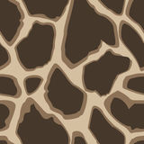 Giraffe skin seamless pattern,  background Stock Photos