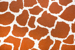 Giraffe skin texture Stock Photos