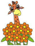 Giraffe späht heraus vom Blumenstrauß von Blumen Lizenzfreies Stockbild