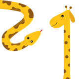 Giraffe with spot. Long neck. Yellow python snake red tongue. Crawling serpent. Zoo animal friends. Cute cartoon funny card for ki. Ds. Isolated. White Stock Image