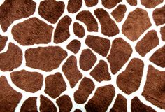 Giraffe spots Royalty Free Stock Photos