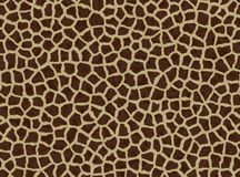 Giraffe spots, giraffe fur Stock Photography