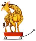 Giraffe standing on small wagon Stock Photo