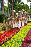 Giraffe Statue In Colorful Garden Royalty Free Stock Images