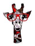 Giraffe with sunglasses Stock Photo