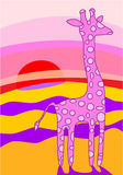 Giraffe at sunset Royalty Free Stock Image
