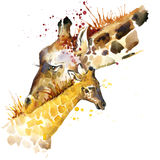 Giraffe T-shirt graphics. giraffe family illustration with splash watercolor textured background. unusual illustration watercolor Royalty Free Stock Photo