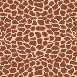 Giraffe_texture Royalty Free Stock Photography