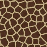Giraffe Texture Background Fur royalty free stock images
