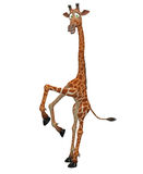 Giraffe toon Royalty Free Stock Photography