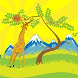 Giraffe and tree Stock Photos