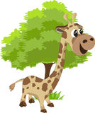 Giraffe and tree. Cute giraffe and tree easy vector Stock Photos
