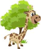 Giraffe und Baum Stockfotos