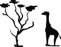 Giraffe und ein Baum stock abbildung